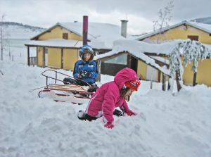 winter, kids, sleight